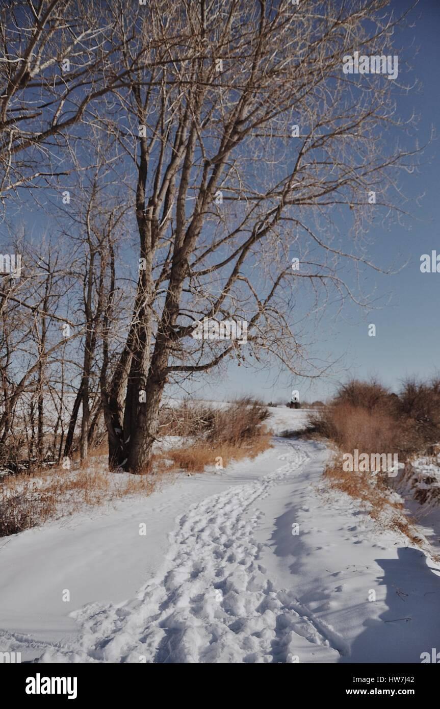 Sonder Explorations - Winter trail in Colorado. - Stock Image