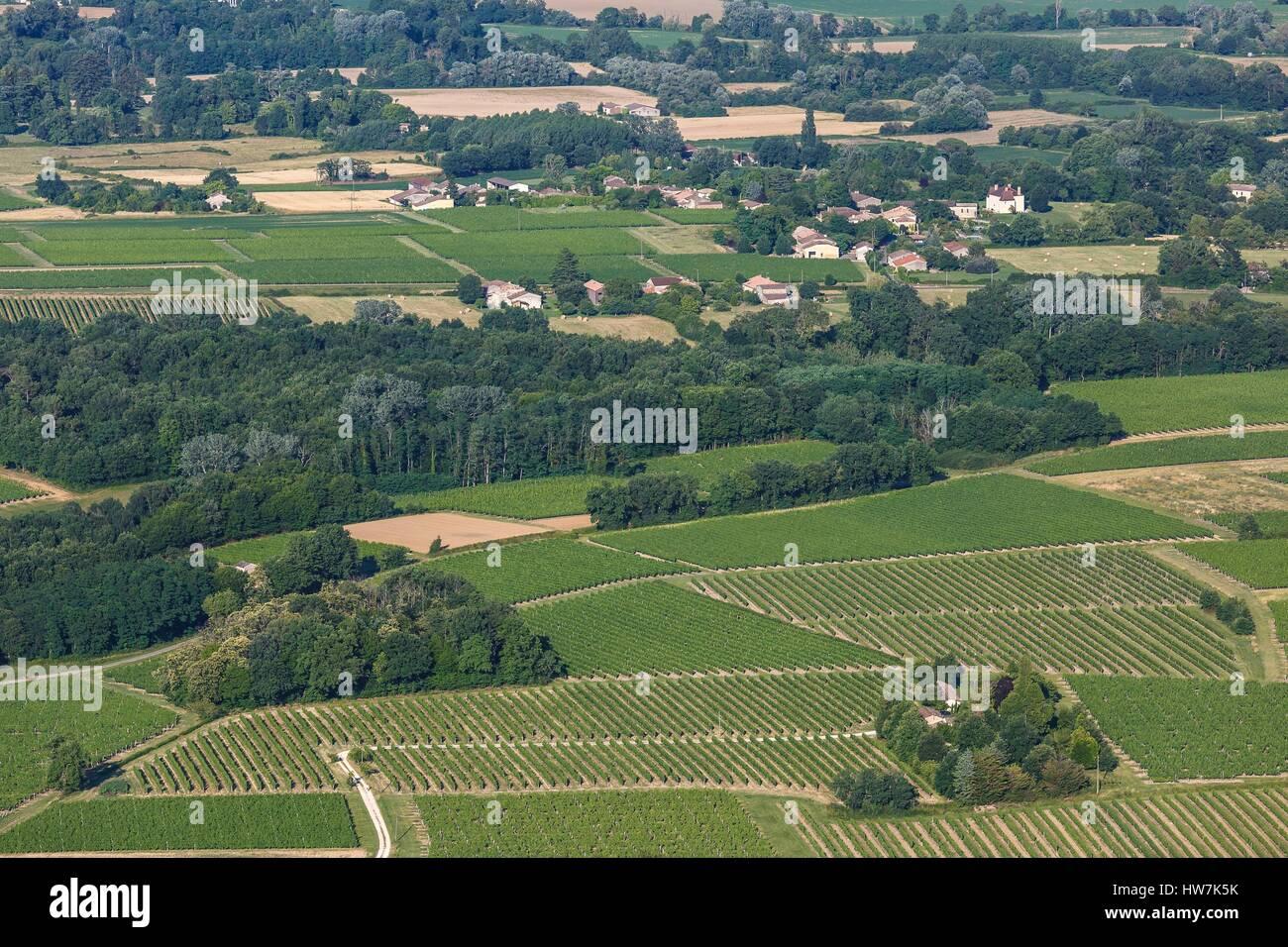 France, Gironde, Saint Felix de Foncaude, Entre deux Mers vineyards (aerial view) - Stock Image