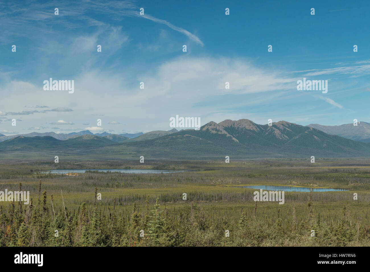 Boreal forest and the Brooks Range from the Dalton Highway, Alaska. - Stock Image