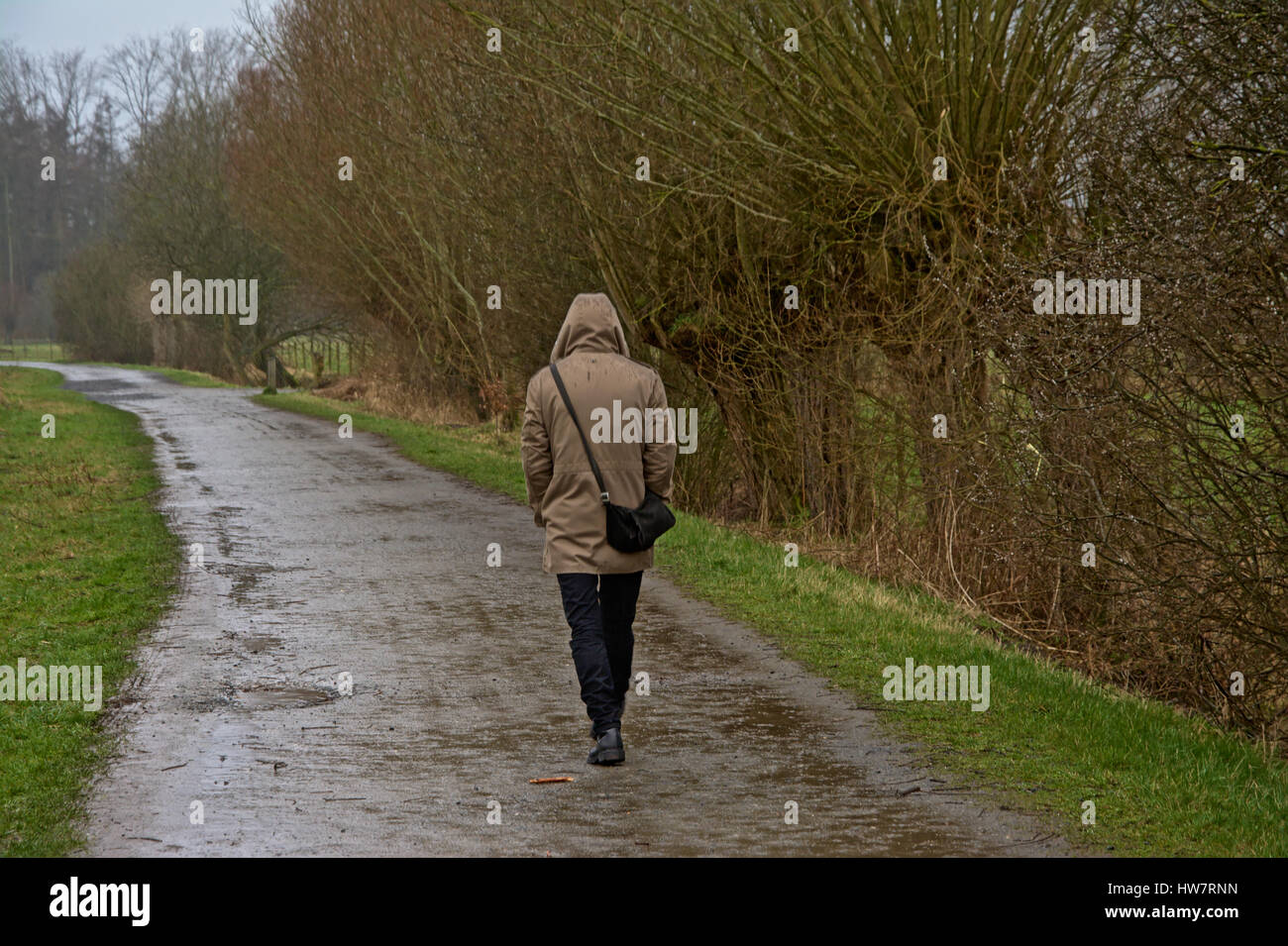 lonely man walking in nature on a rainy day stock photo