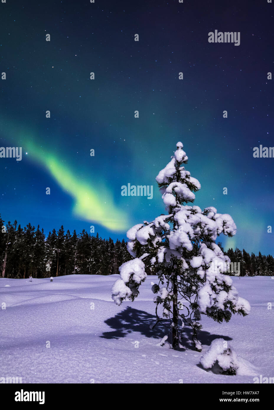 Snowy night in Finland - Stock Image