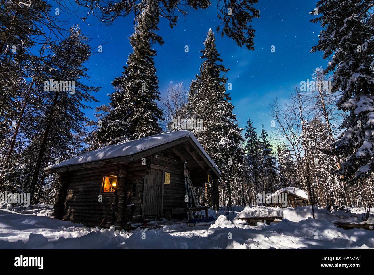 Hut in the woods - Stock Image