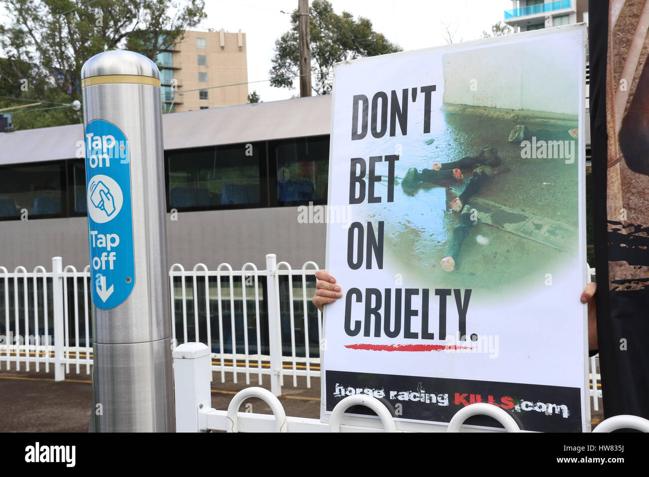 Sydney, Australia. 18 March 2017. Animal rights activists protest at Rosehill Station against horse racing on Golden Stock Photo