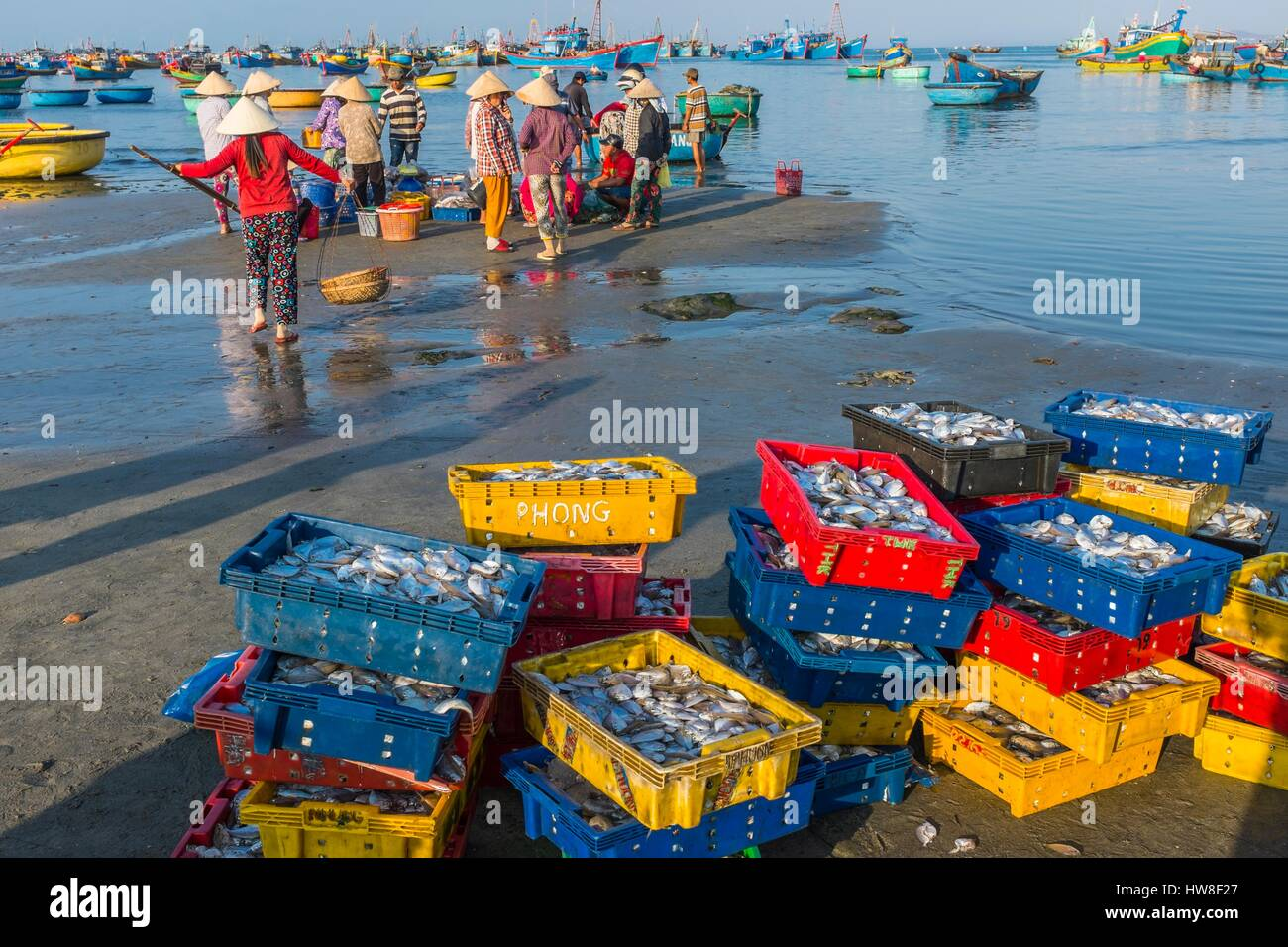 Vietnam, South Central Coast region, Mui Ne fishing village, return from fishing - Stock Image