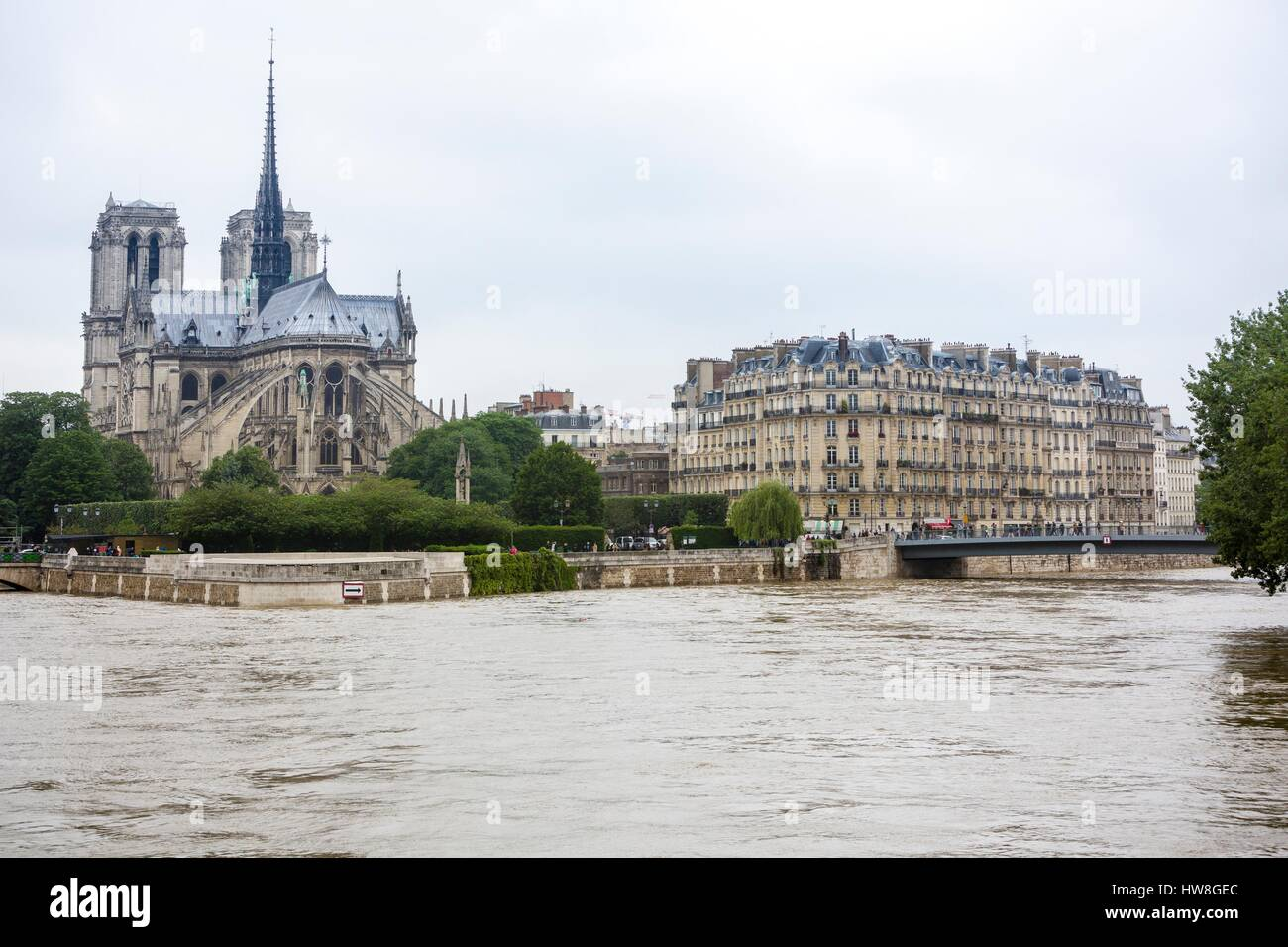 Image result for notre dame flood