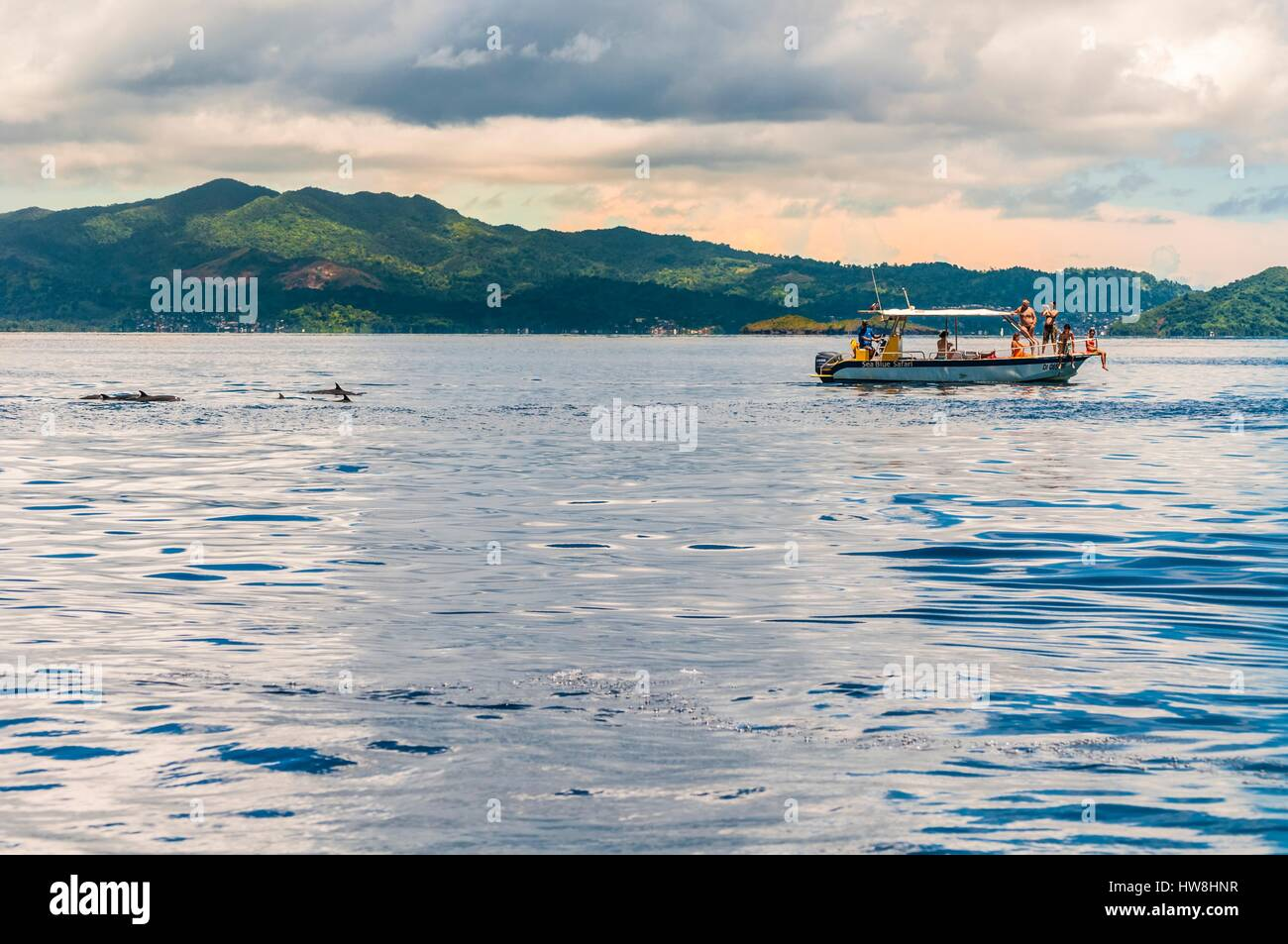 France, Mayotte island (French overseas department), Grande Terre, output naturist boat for dolphin watching in - Stock Image