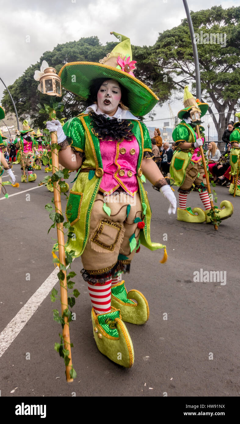 Girl/woman in elaborate fancy dress costume, Tenerife carnival - Stock Image