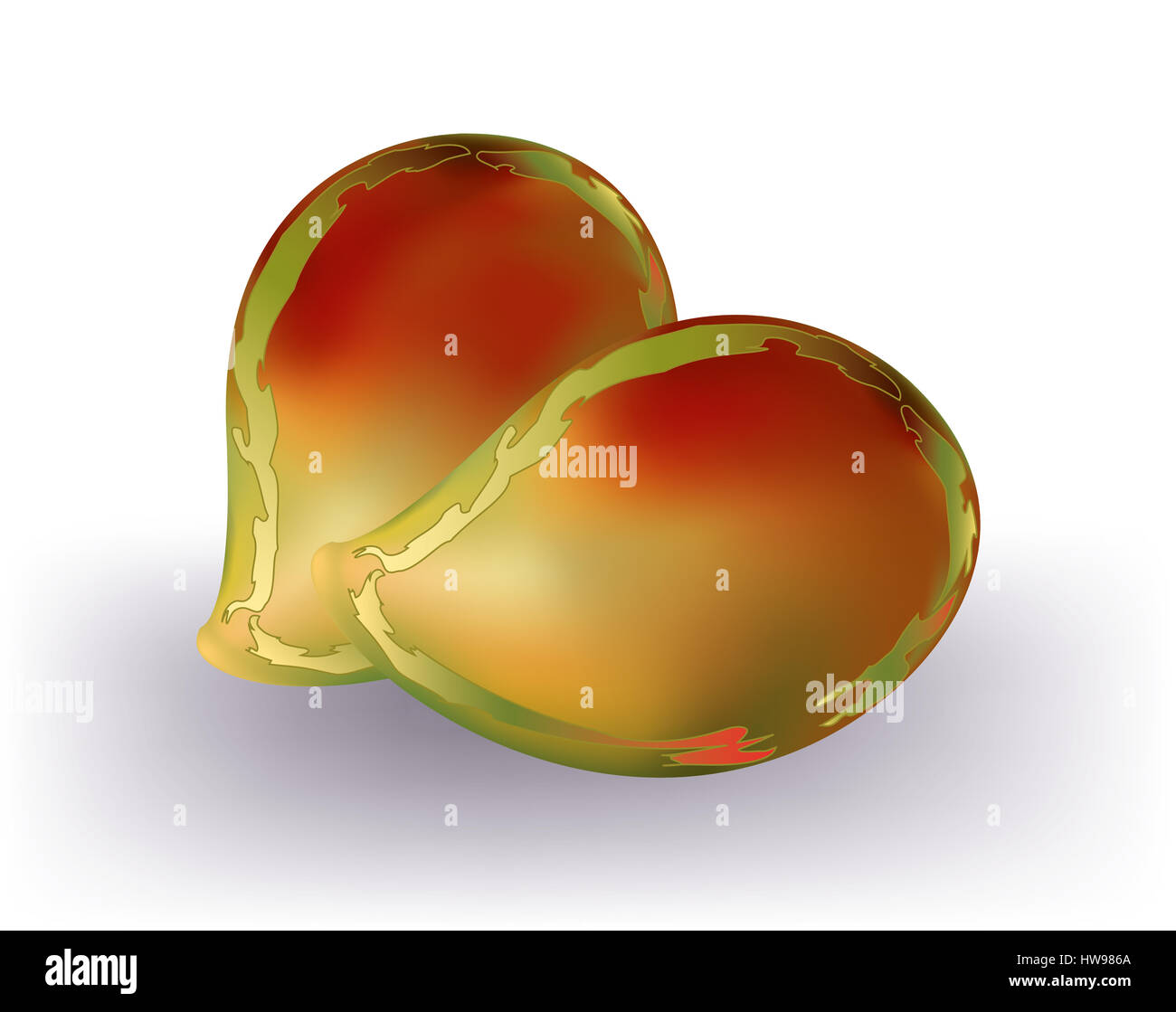 Red mangoes isolated - Stock Image