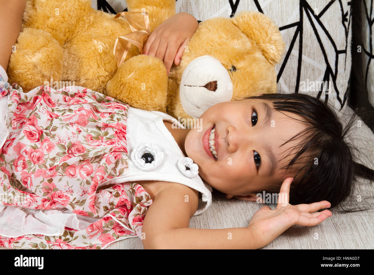 Asian teddy phrase