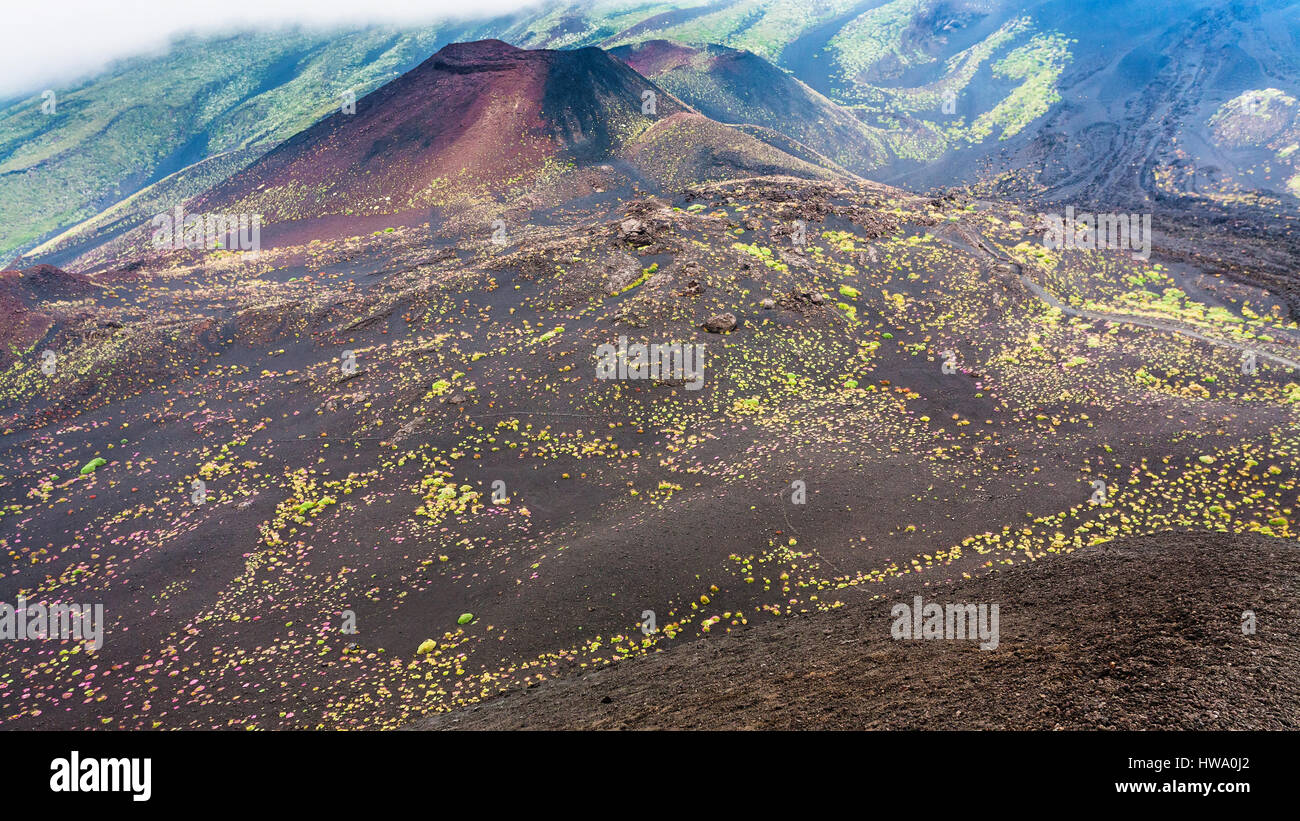 travel to Italy - hardened lava fields and craters on Mount Etna in Sicily in summer day - Stock Image