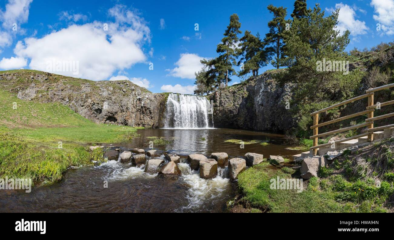 France  Auvergne  Cantal  Allanche  Regional Natural Park Of The Stock Photo  136065685