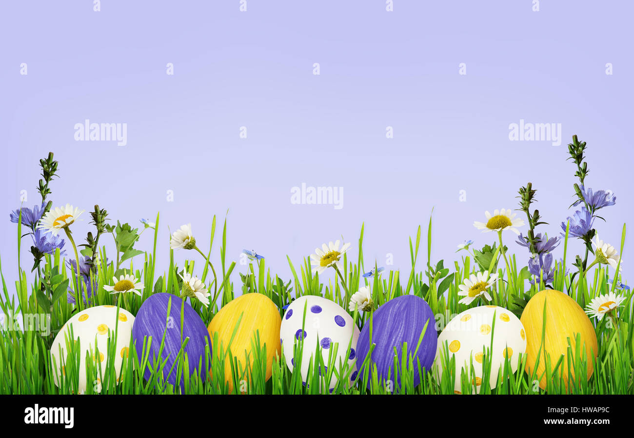 grass and flowers border. Simple Flowers Easter Eggs Grass And Wild Flowers Border On Blue Background For Grass And Flowers Border S