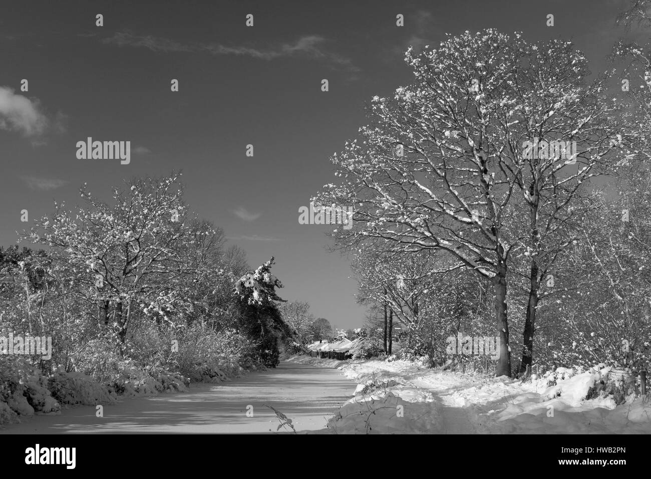 Black and white view of Basingstoke Canal frozen and in snow Fleet,Hampshire. - Stock Image