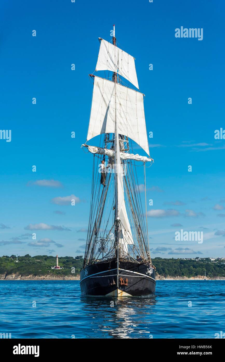 France, Finistere, Brest, Brest 2016 International Maritime Festival, large gathering of traditional boats from - Stock Image