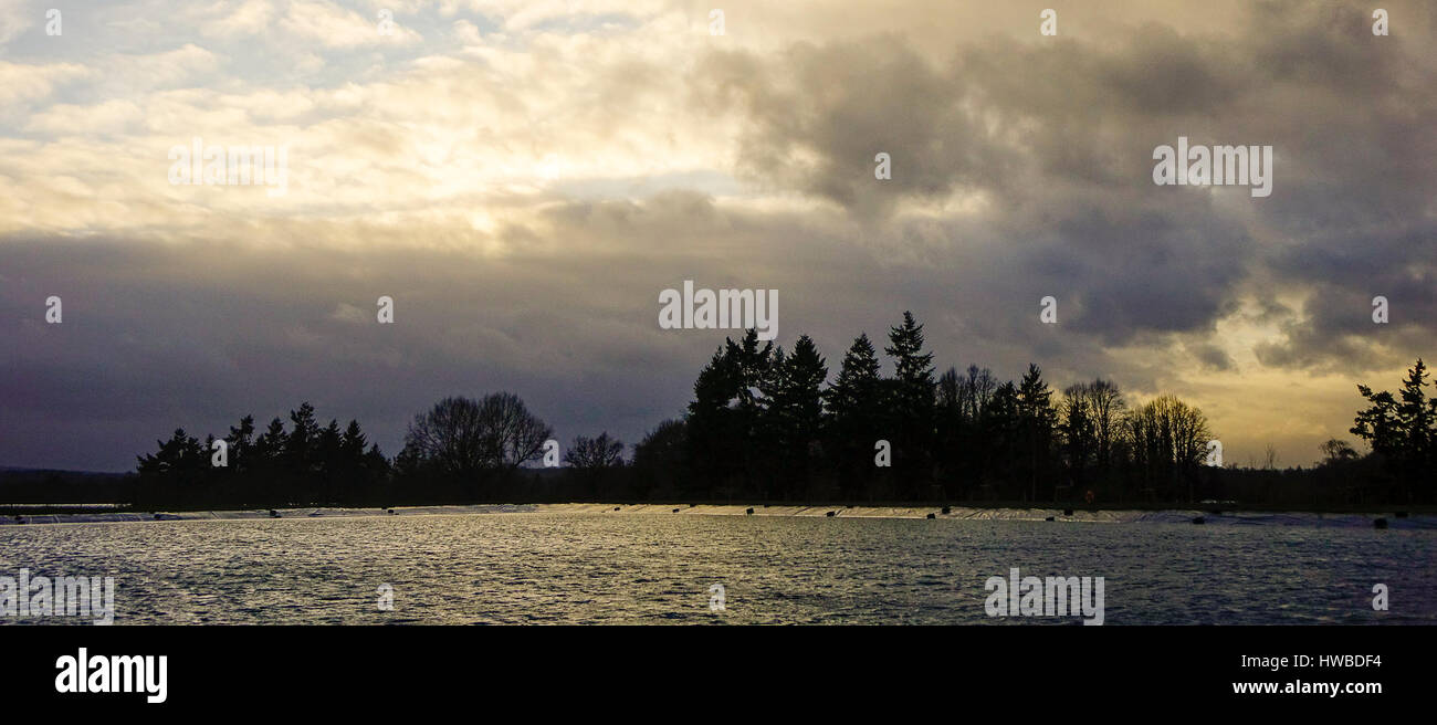 Tuesley Farm, Godalming. 19th March 2017. The remnants of Storm Stella brought very windy and tempestous weather - Stock Image