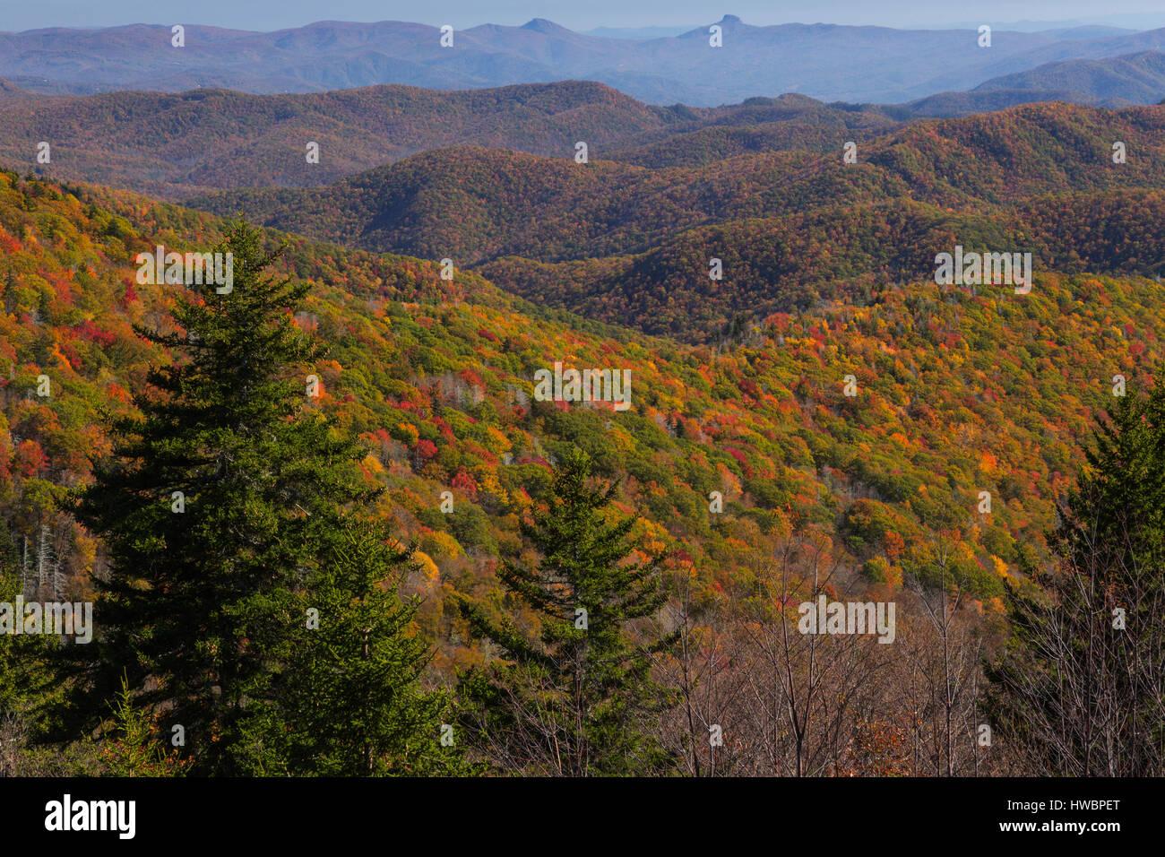 Fall colors along the Blue Ridge Parkway, NC, USA - Stock Image