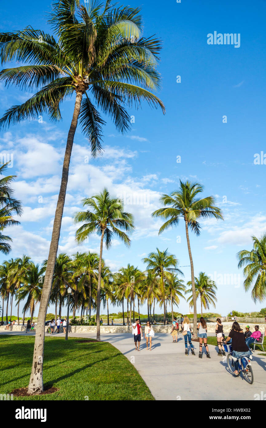 miami beach florida ocean drive lummus park serpentine trail