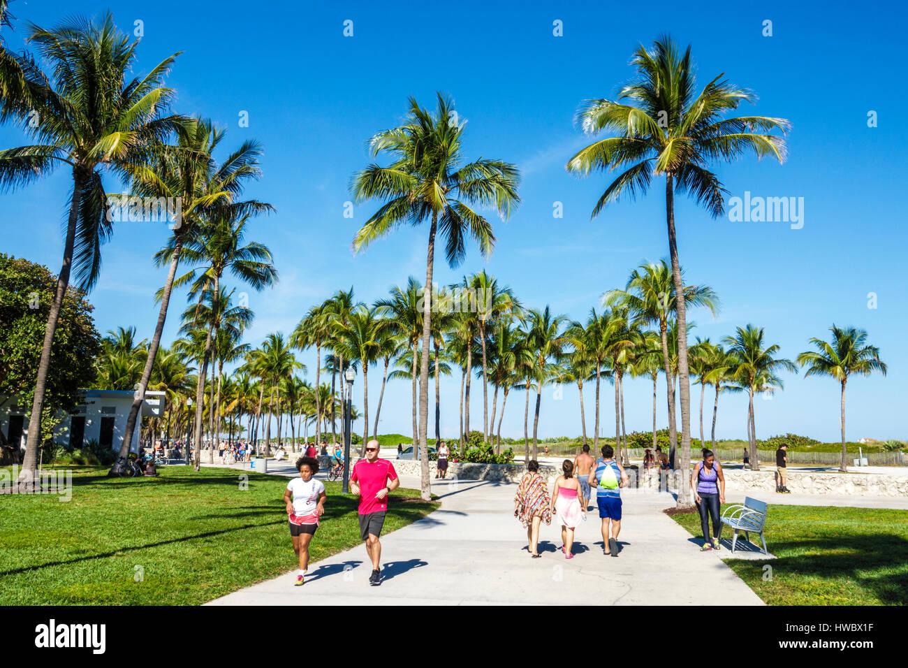 Miami Beach Jogging Path