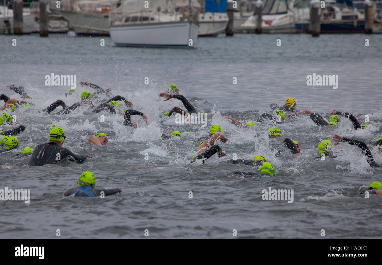 The start of a swim leg at the Geelong triathlon. - Stock Image