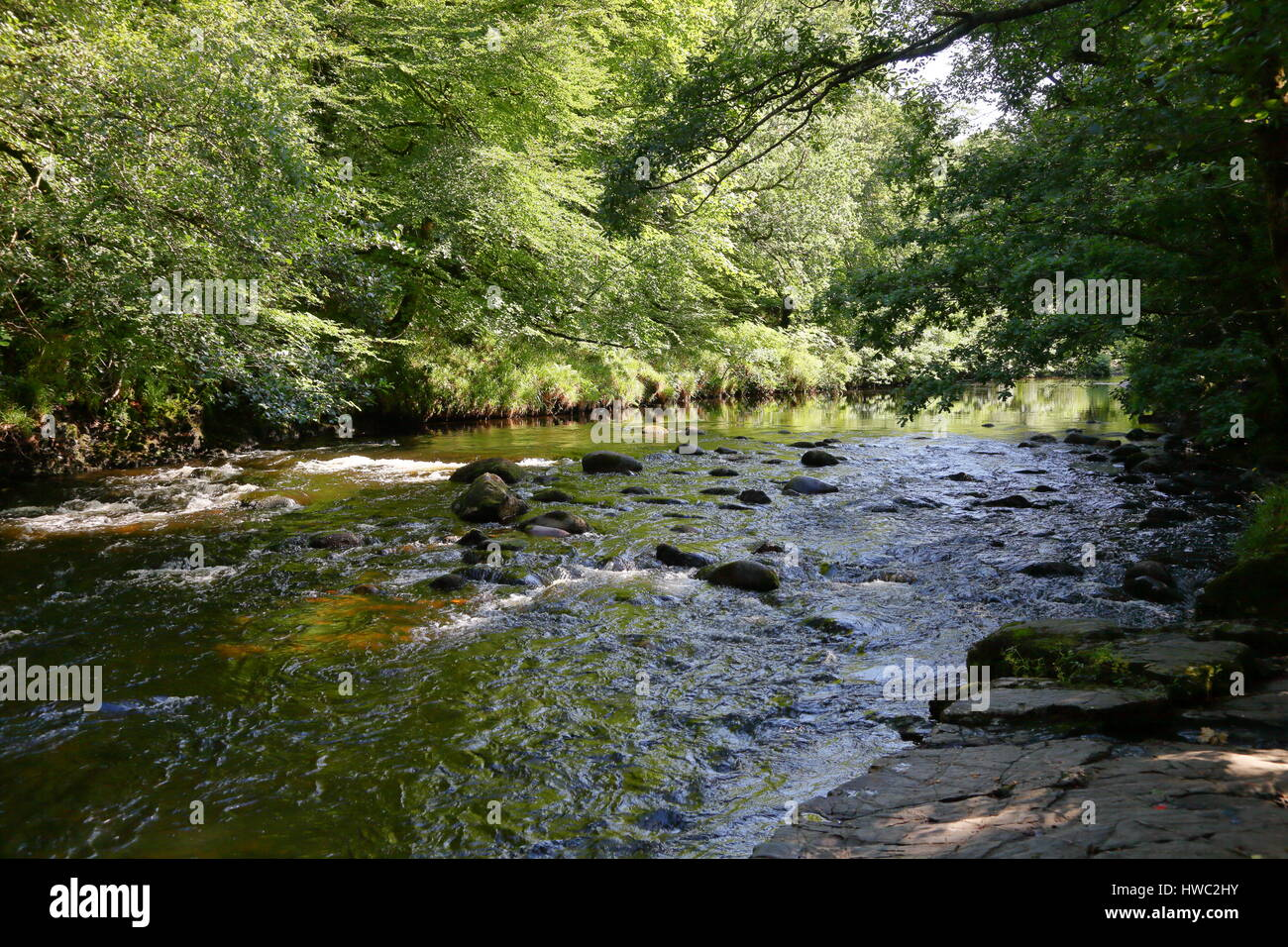 Reflections and water flowing over rocks in River Dart at New Bridge near Ashburton Devon UK - Stock Image