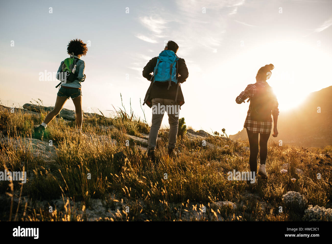 Three young friends on a country walk. Group of people hiking through countryside on summer day. - Stock Image