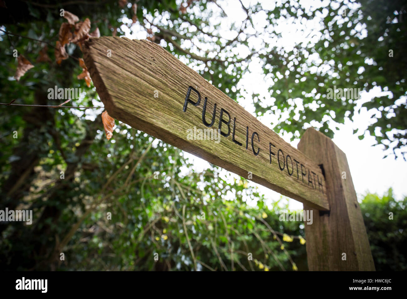 Wooden public footpath sign in England - Stock Image