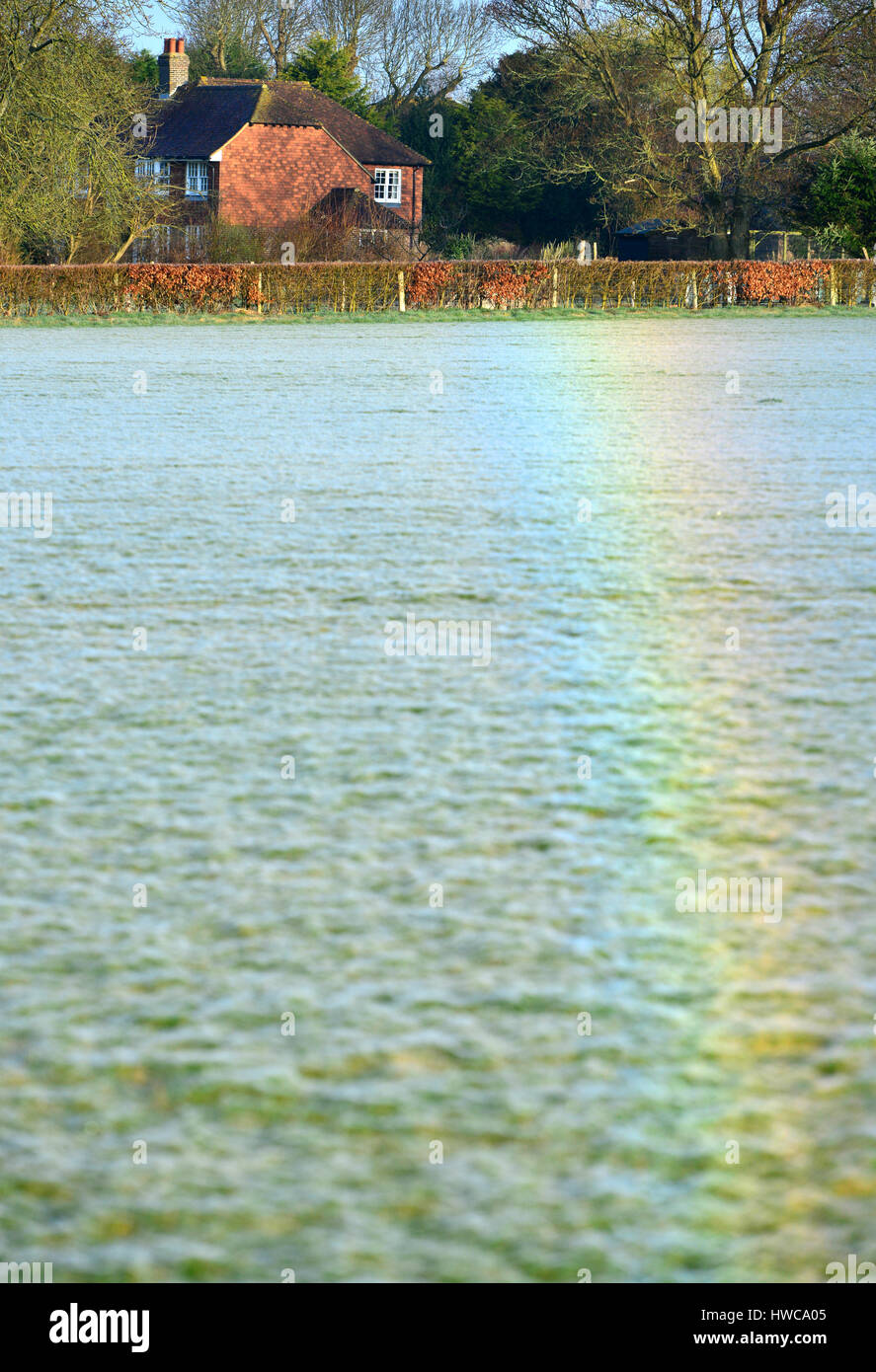 Rainbow created by light refracted from dew on millions of tiny spider webs, East Sussex. - Stock Image