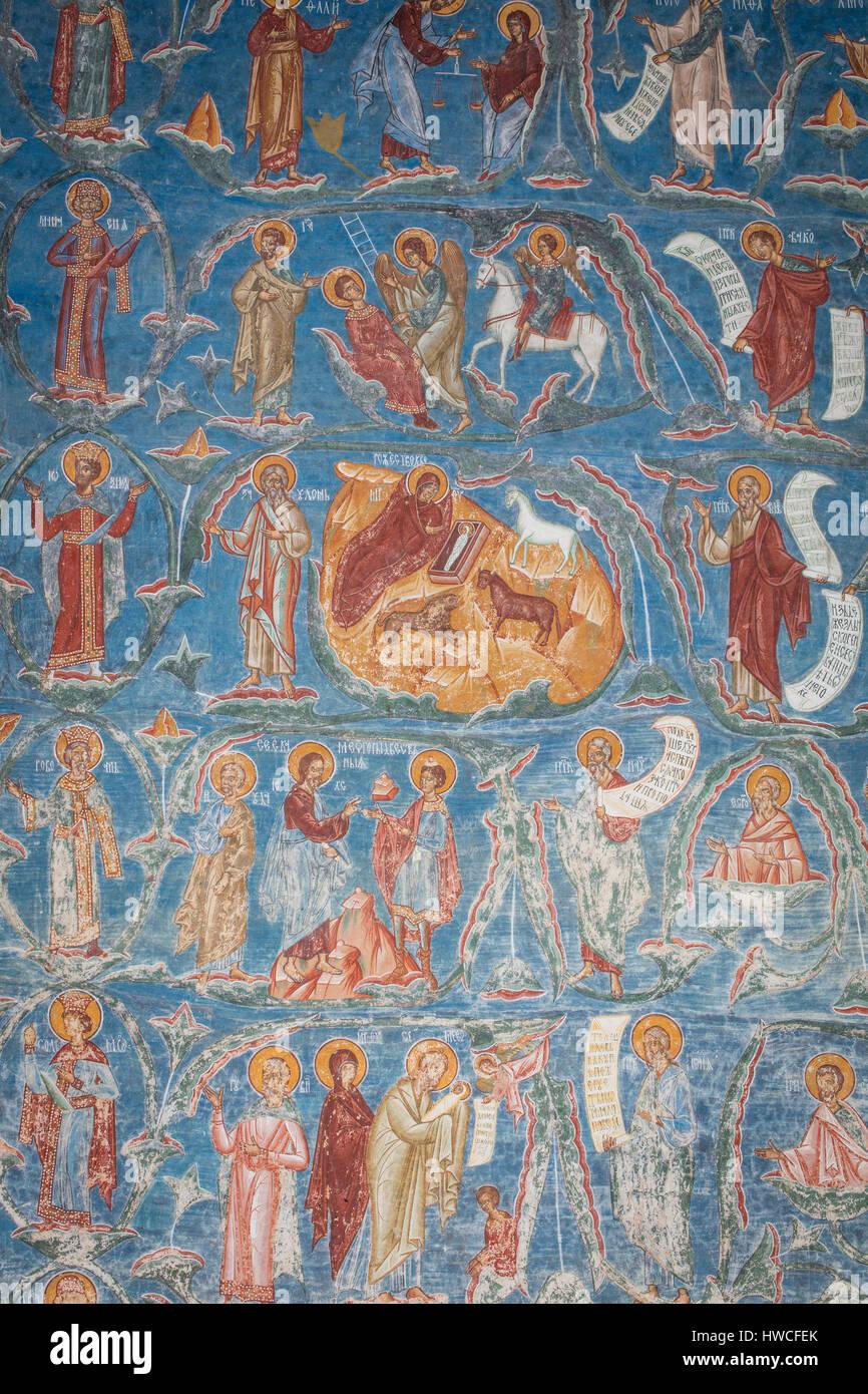 Fresco, Tree of Jesse, Church Sfântul Gheorghe in Voronet, Churches of Moldavia, Bukovina, Romania - Stock Image