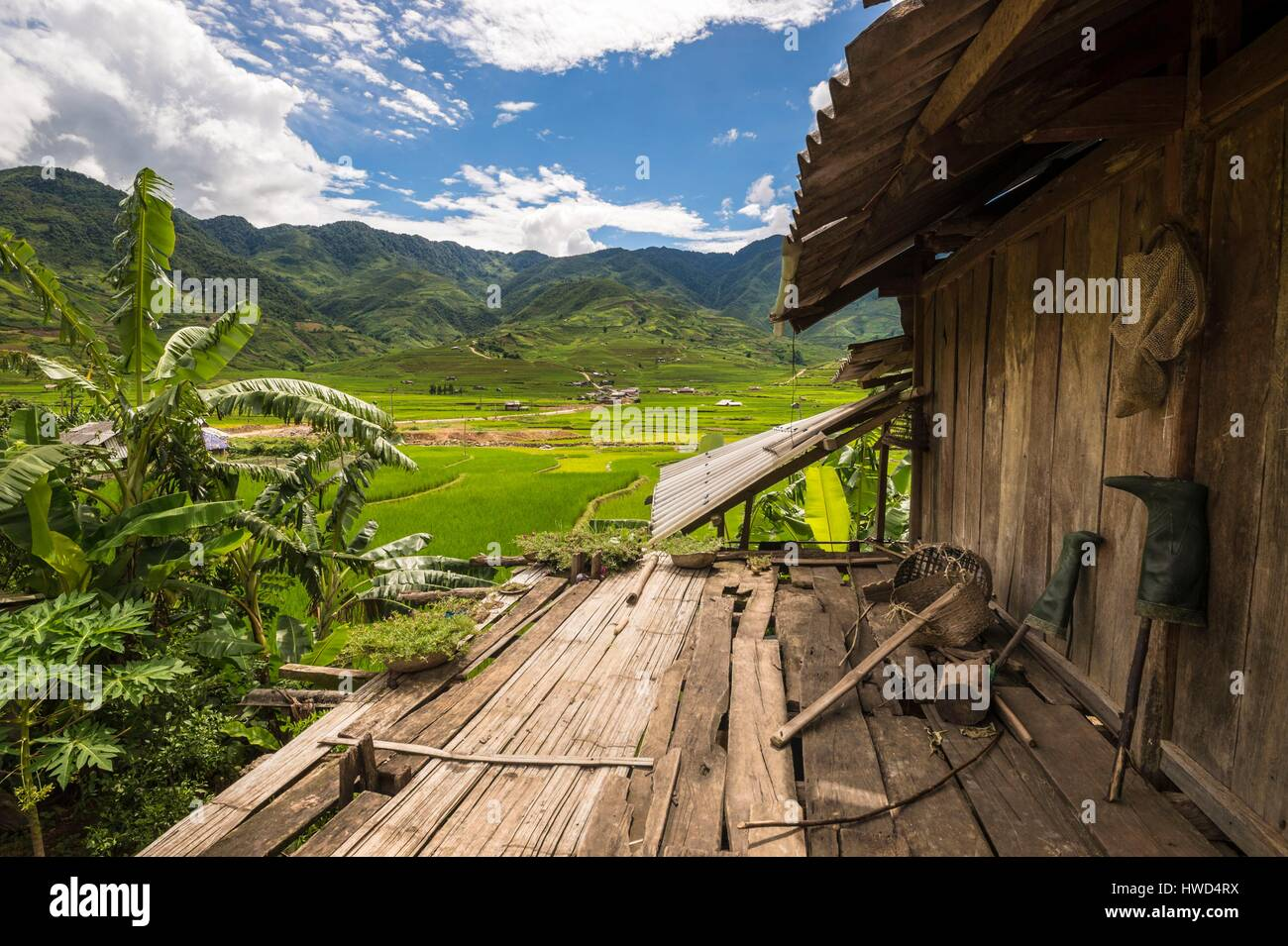 Vietnam, Mountain Range Of Hoang Lien Son, Village Of Tu Le, Overlooking  The Rice Fields From The Terrace Of A Wooden House On Stilts