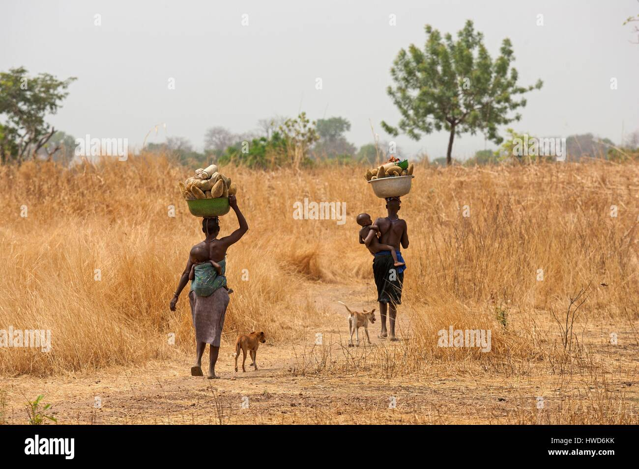 Togo, northern region, woman Tamberma Stock Photo