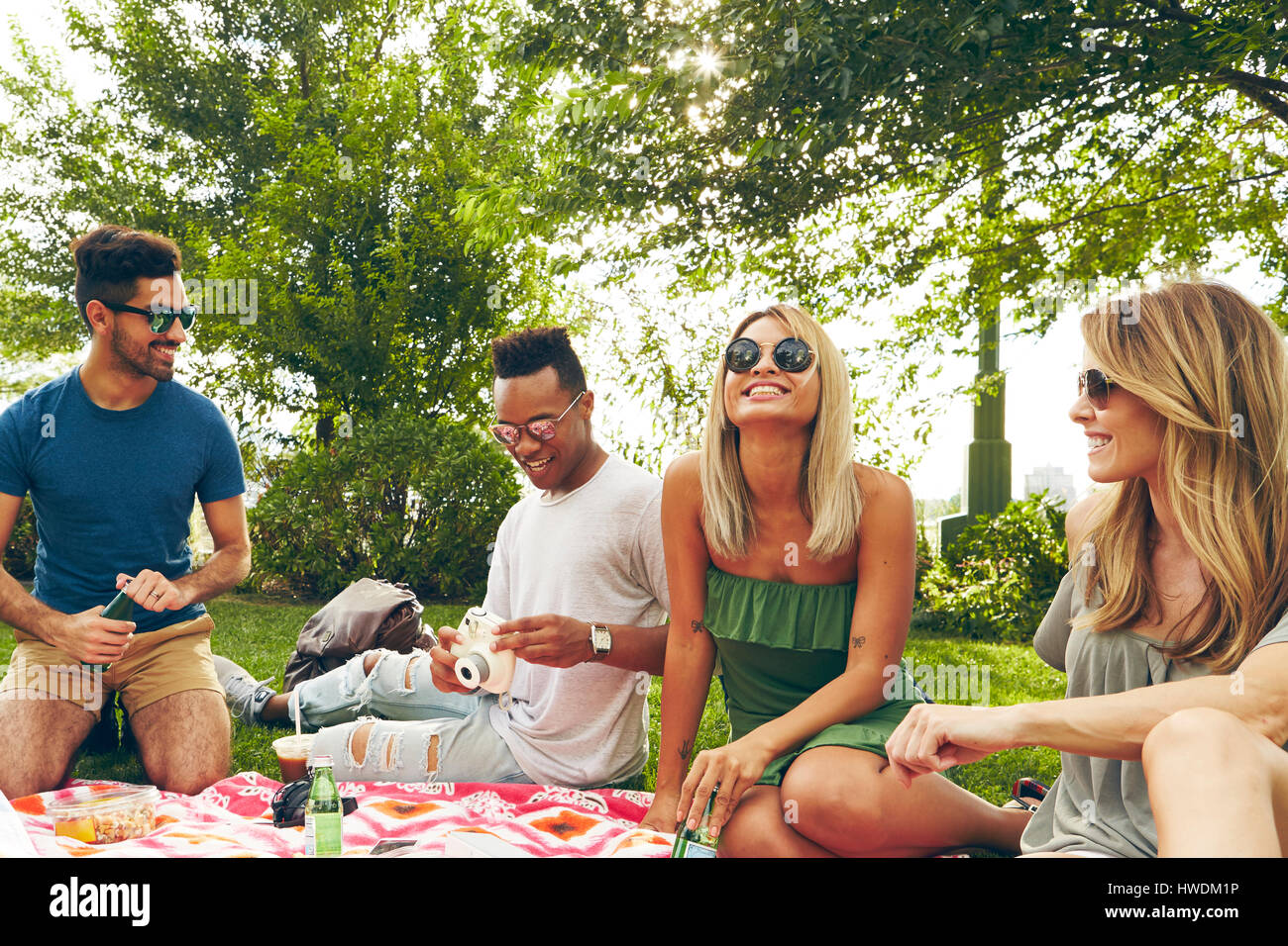Five adult friends picnicking in park - Stock Image