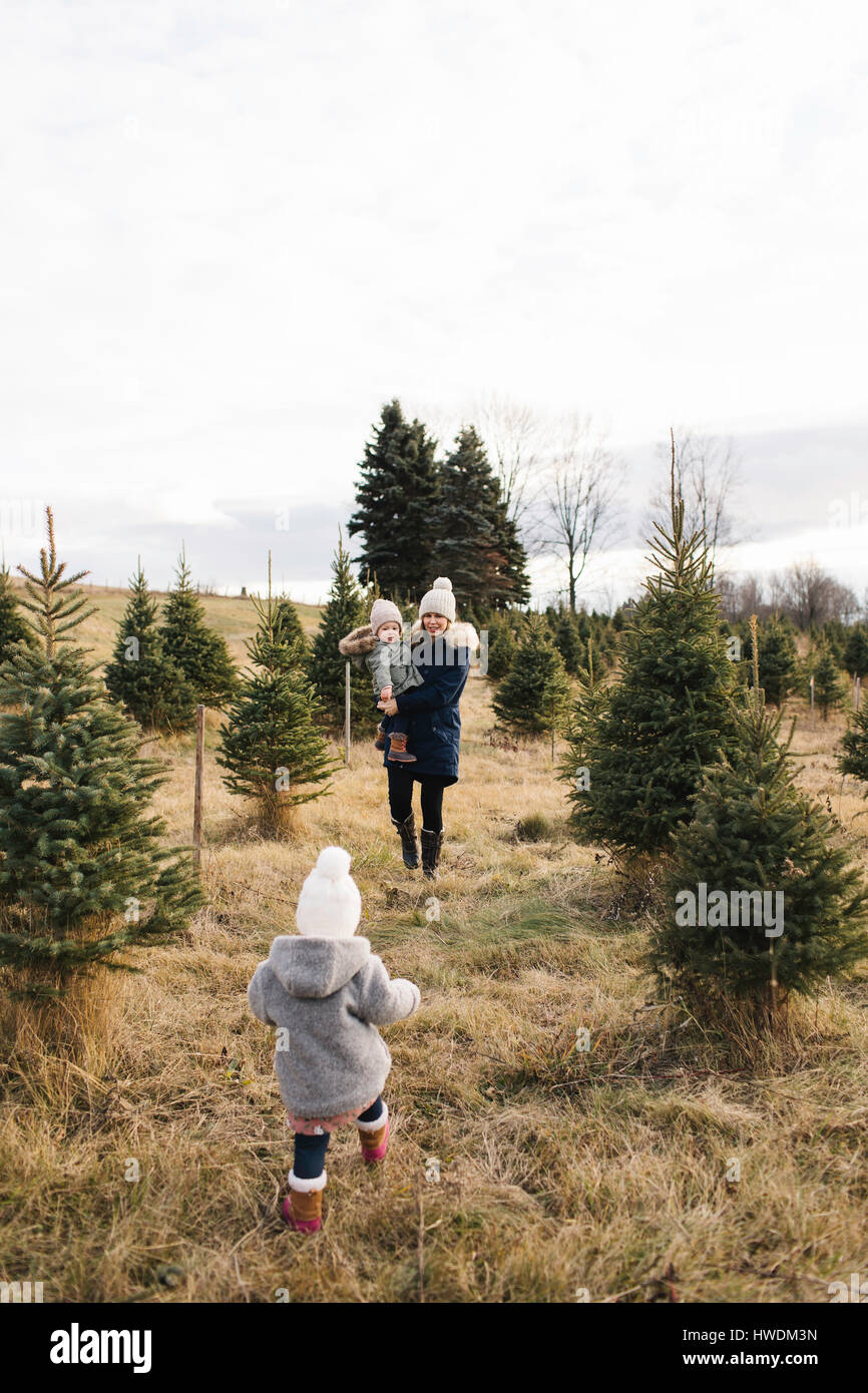 Mother and baby girls in Christmas tree farm, Cobourg, Ontario, Canada - Stock Image