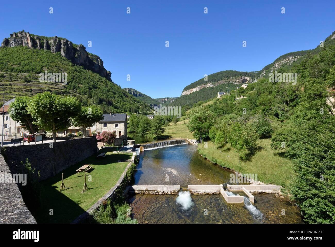 France, Gard, Treves, Trevezel river, dam and fish passes, Rocher du Regard - Stock Image