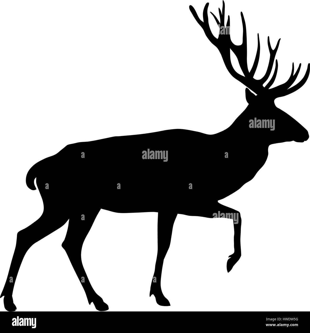 Vector illustration of deer silhouette - Stock Image