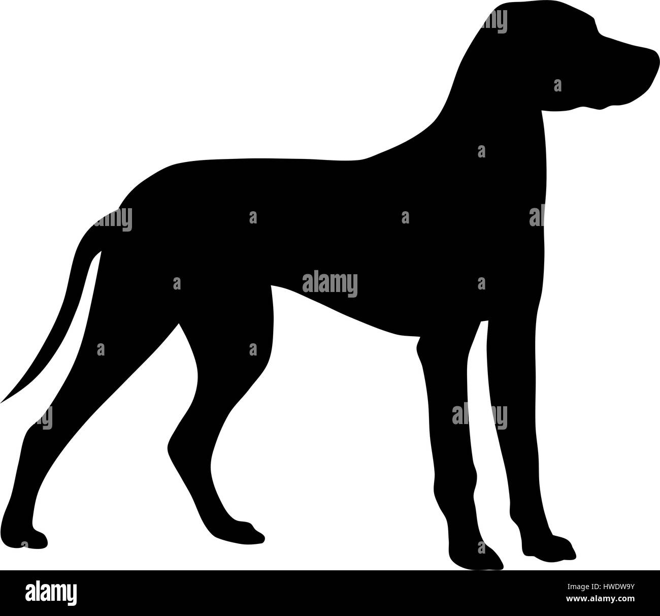 Abstract vector illustration of hunting dog silhouette - Stock Image