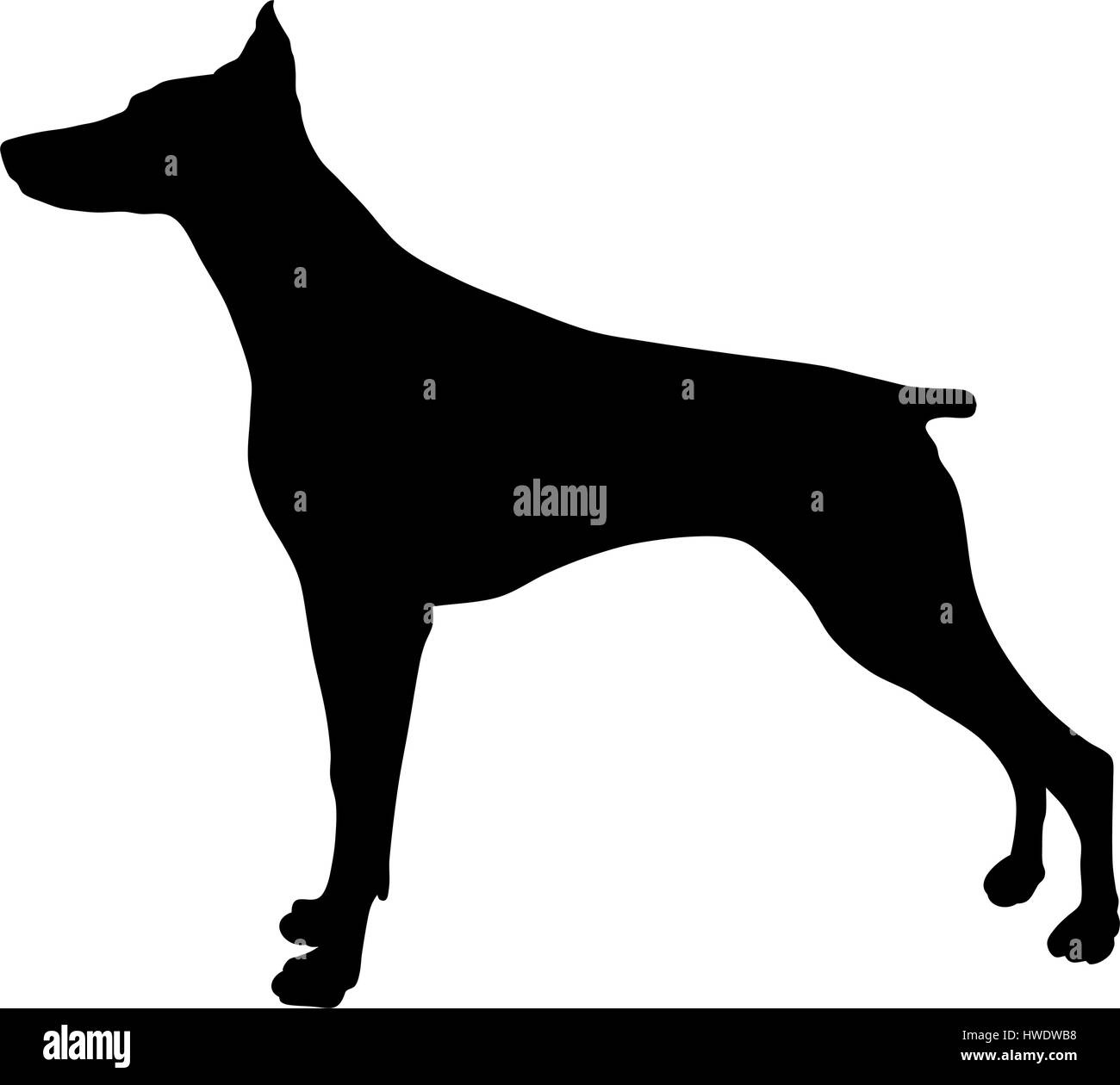 Abstract vector illustration of dog silhouette - Stock Image