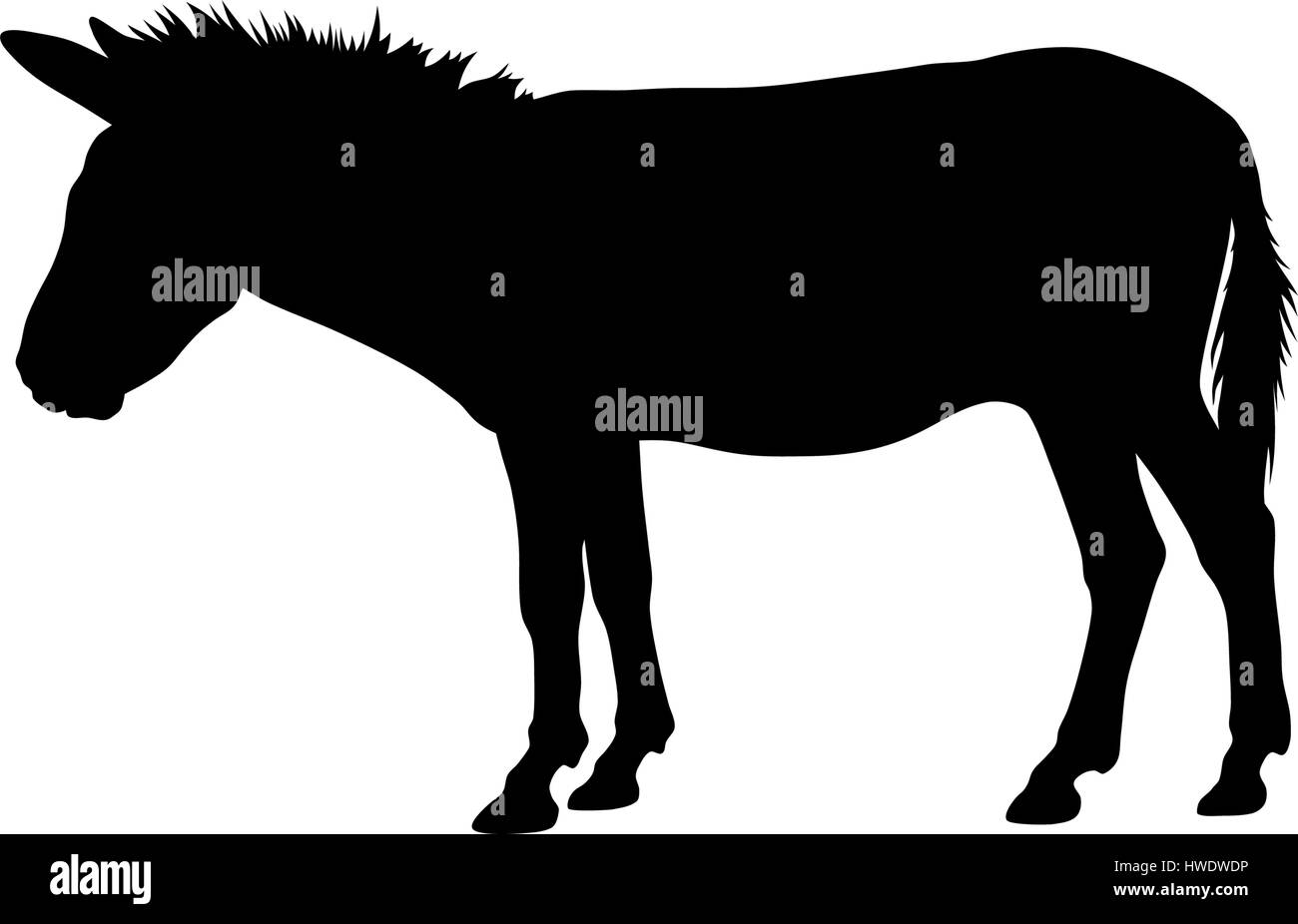 Vector illustration of donkey silhouette - Stock Image