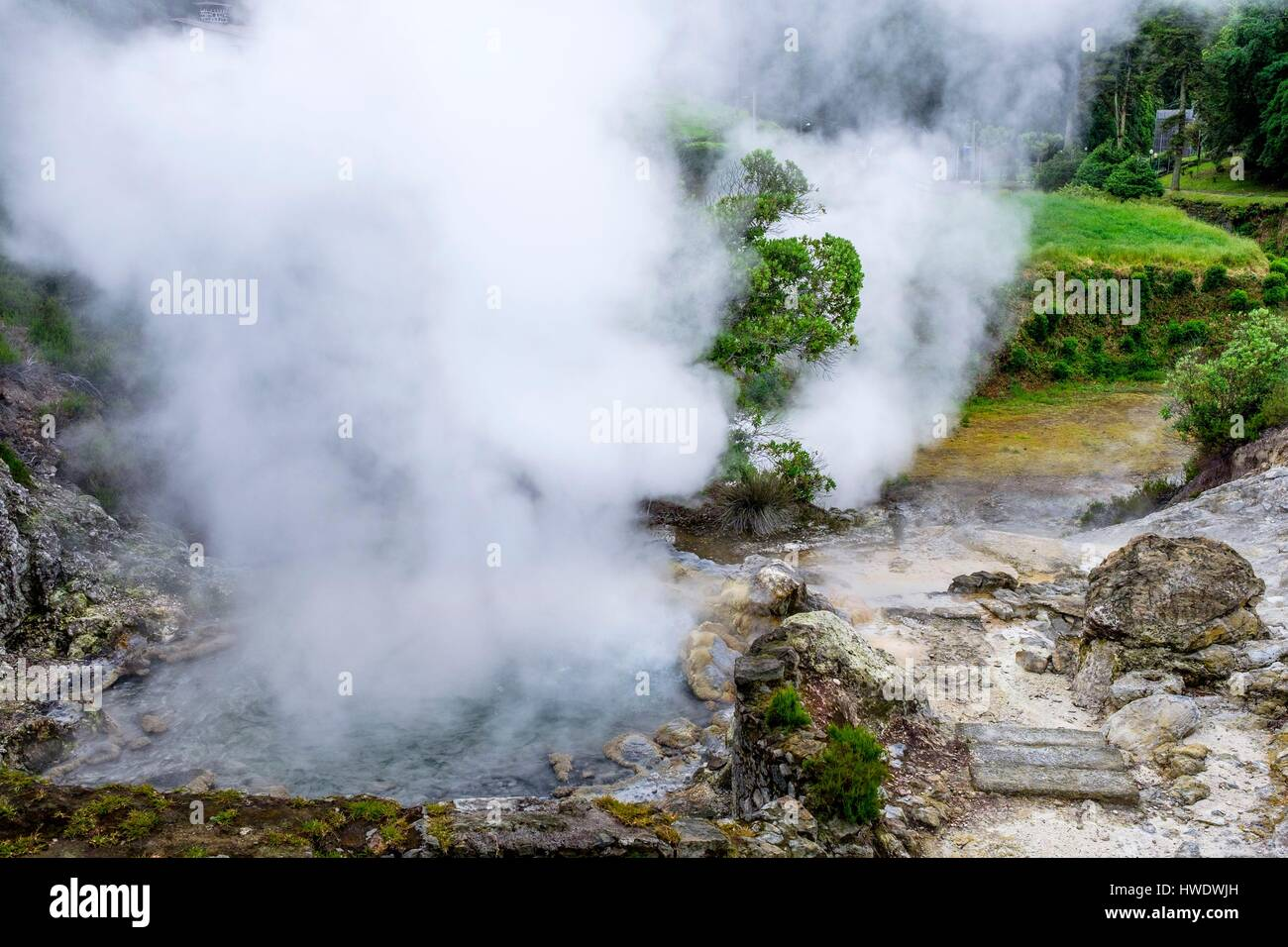 Portugal, Azores archipelago, Sao Miguel island, Furnas, active volcanic complex with 22 thermal springs and many - Stock Image
