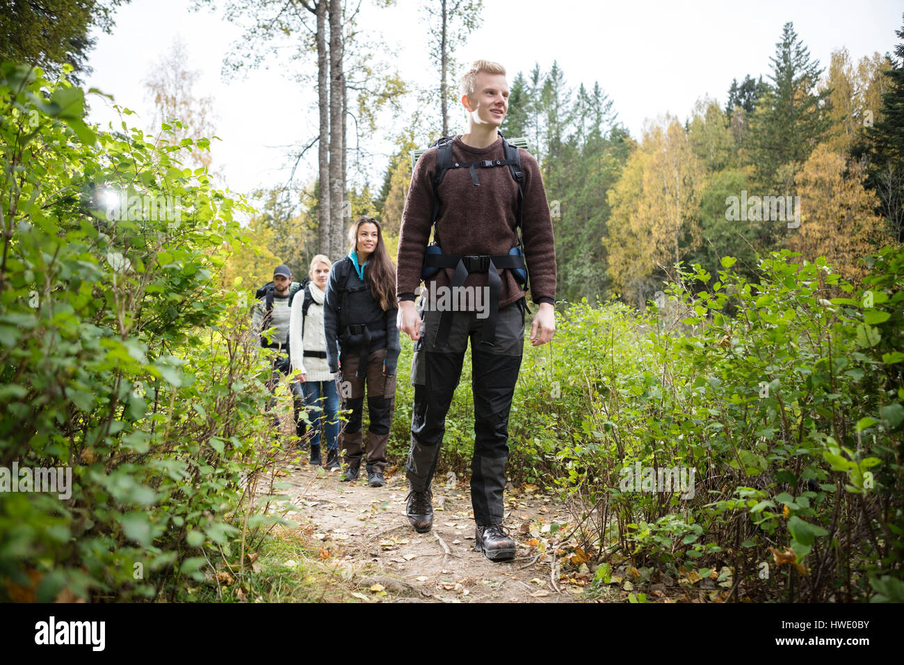 Male Hiker With Friends Walking On Forest Trail - Stock Image