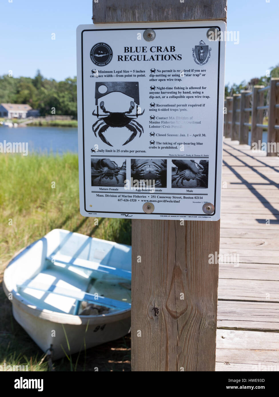 Blue crab regulation sign posted in Orleans, Massachusetts on Cape Cod. - Stock Image