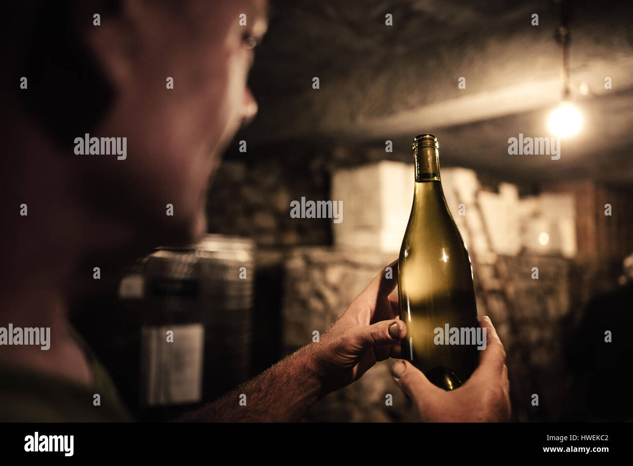 Winemaker gazing at wine bottle in cellar - Stock Image