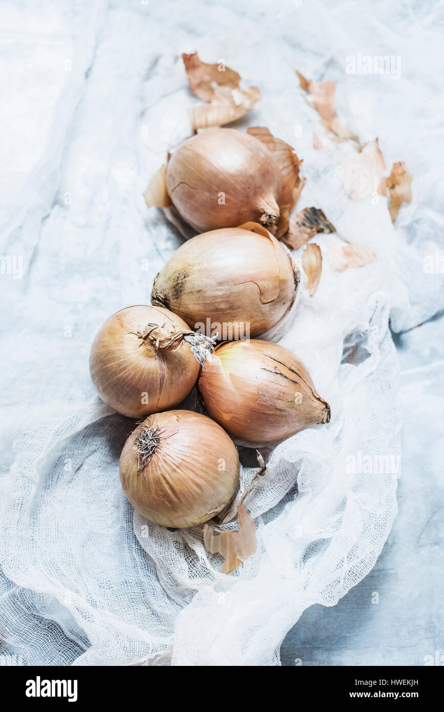 Studio shot, overhead view of onions on muslin - Stock Image