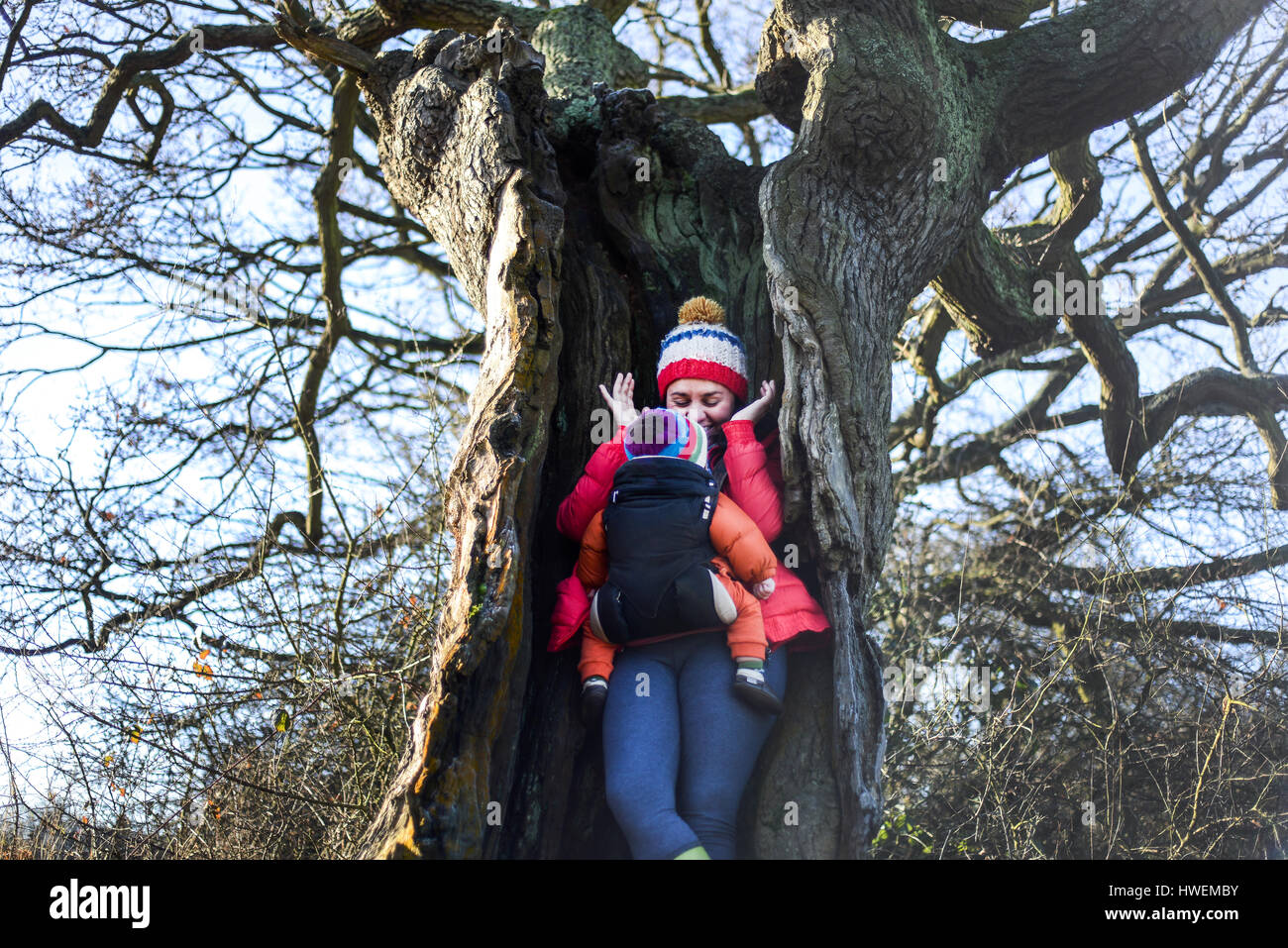 Woman in hollow tree, carrying young baby in sling - Stock Image