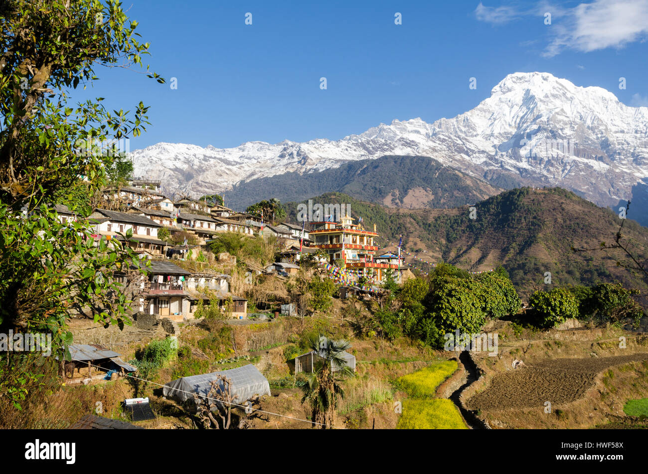 Photos from travelling around beautiful Ghandruk Village of Nepal near Pokhara.  This village is a traditional Gurung - Stock Image