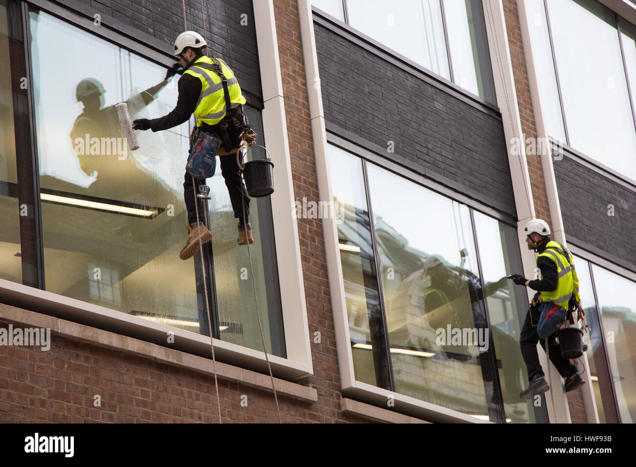 Two window cleaners working while abseiling down a new office block in London Stock Photo