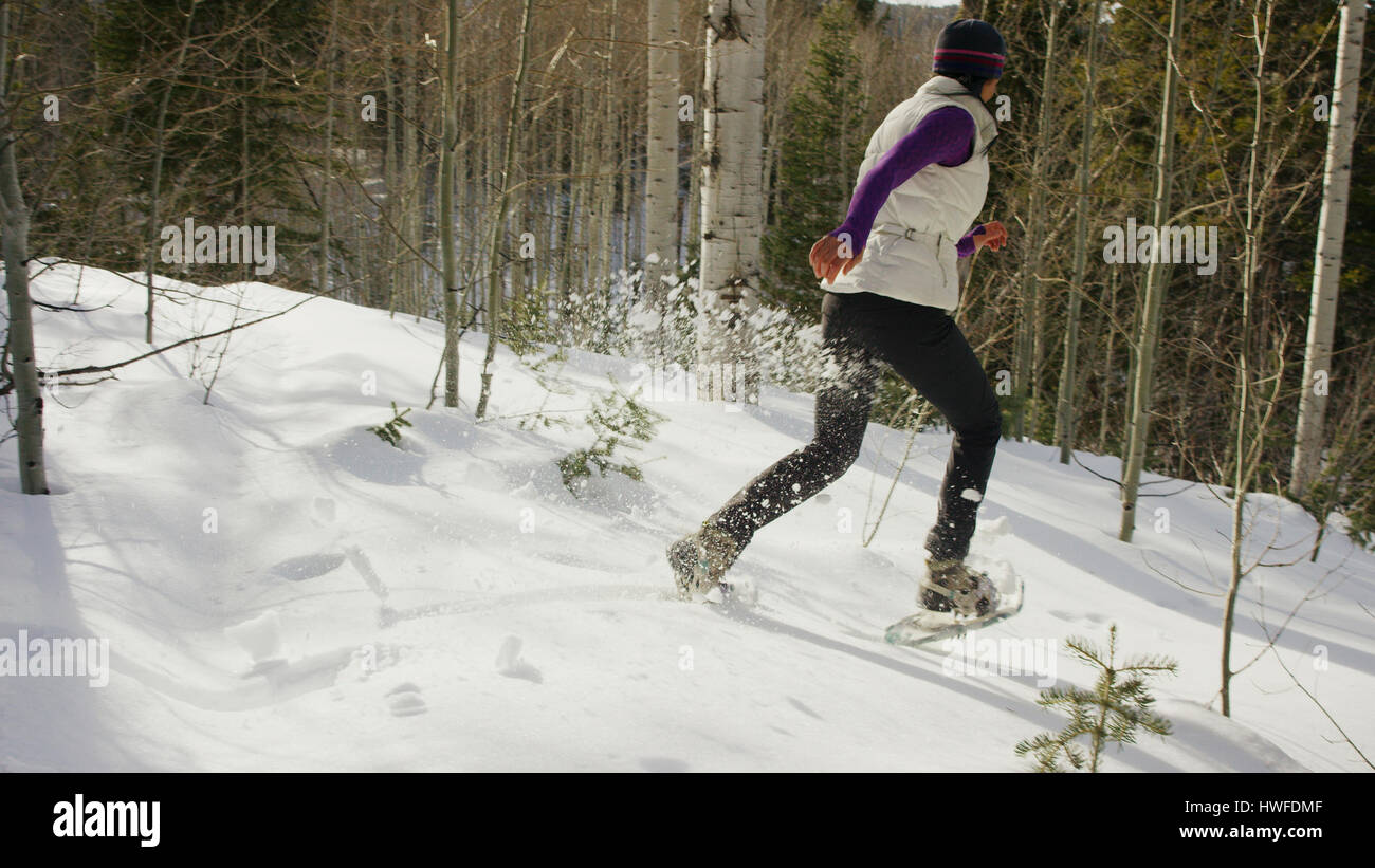 Snowshoer spraying snow in remote snowy hillside forest - Stock Image