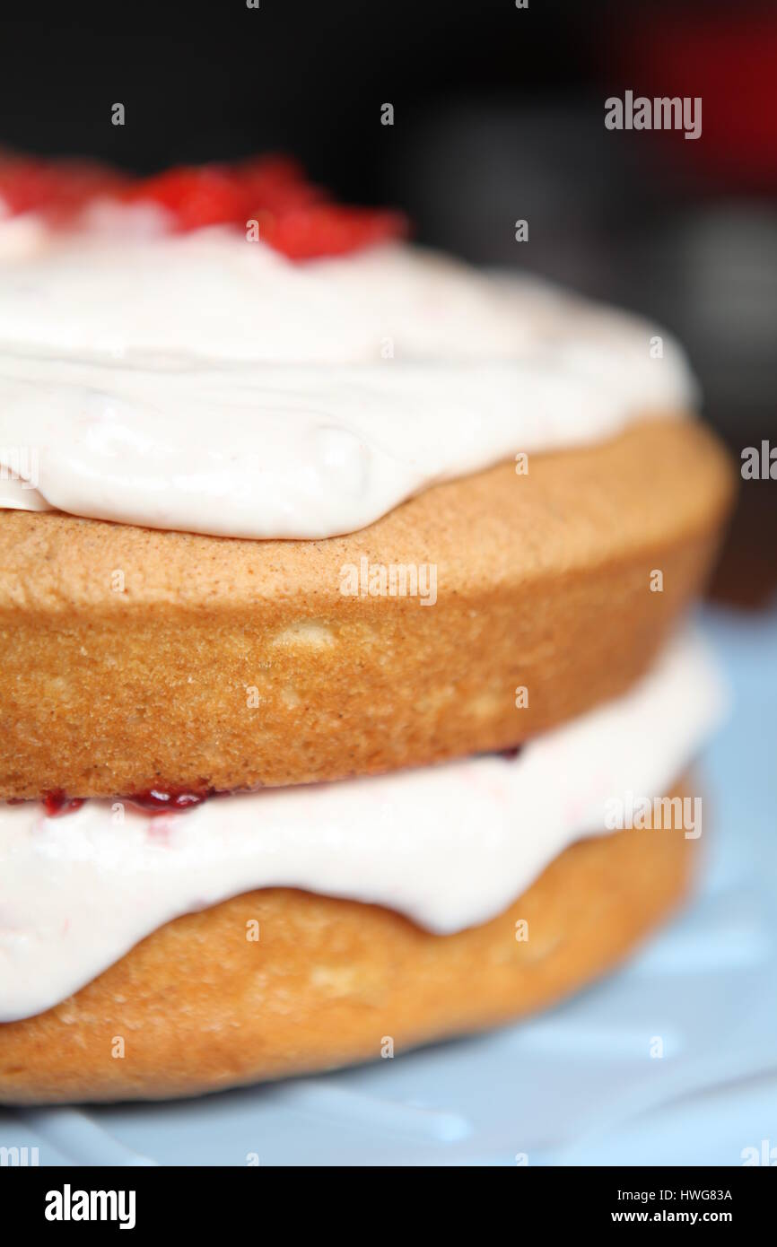 Baking a homemade sponge cake for a birthday party. - Stock Image