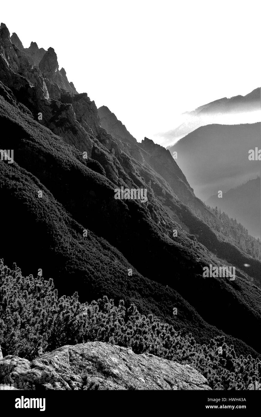 tatra mountains - Stock Image