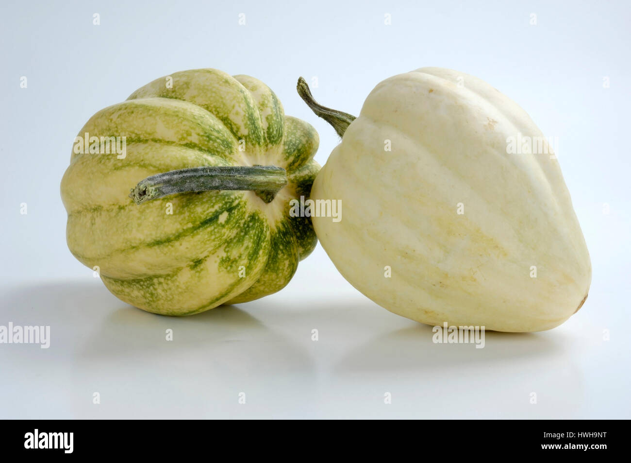 Pumpkins Acorn, Cucurbita pepo squashes Acorn, ornamental pumpkins ornamental pumpkin, garden pumpkin, pumpkin plants, - Stock Image