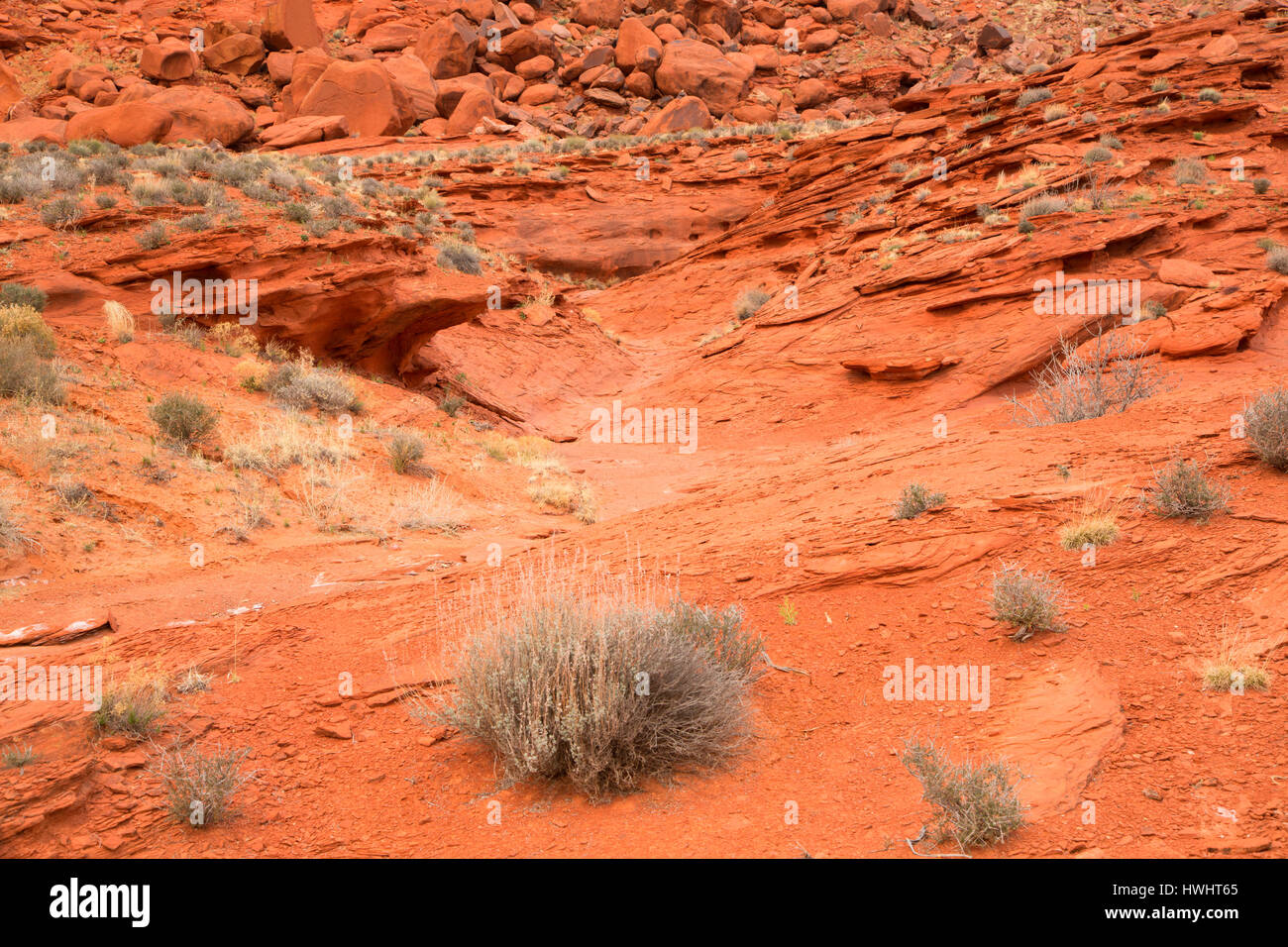 Sandstone wash with sage at Cliffline Viewpoint, Dead Horse Mesa Scenic Byway, Grand County, Utah - Stock Image